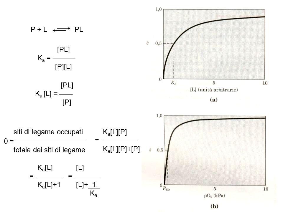q = P + L PL [PL] Ka = [P][L] [PL] Ka [L] = [P]